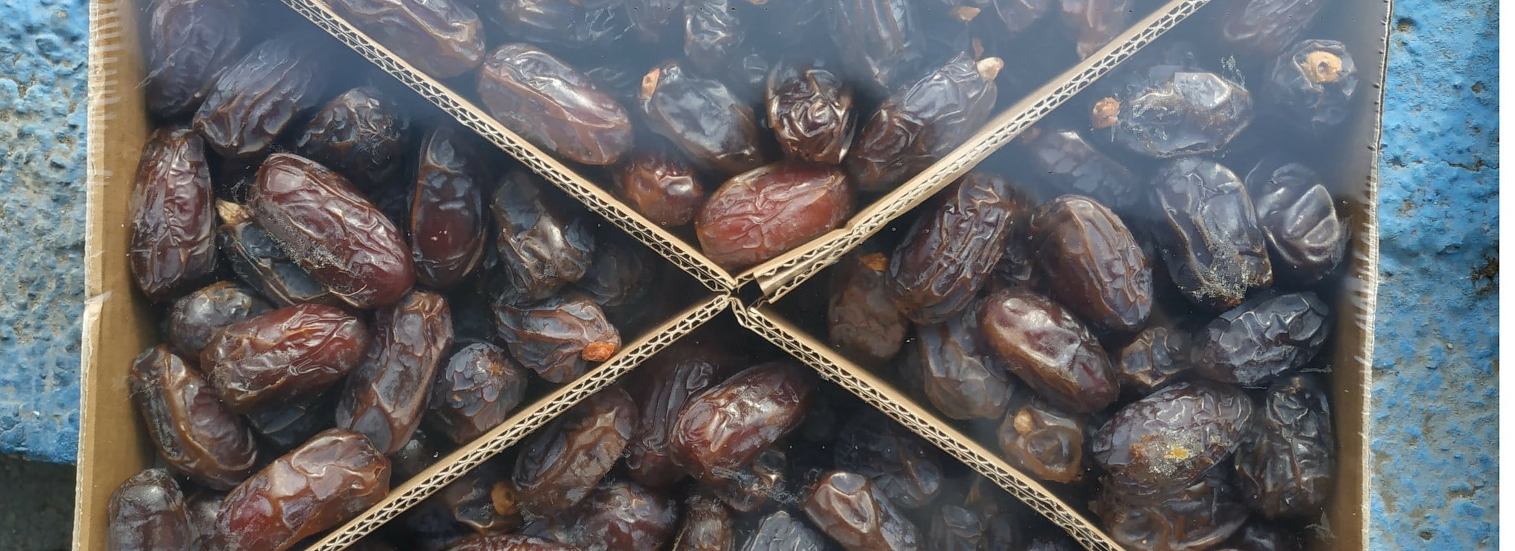 5kg bio medjool medjoul datteln dattes dadels dates dadler dadlar datiles 10