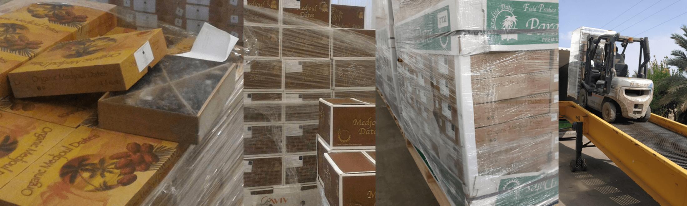 groothandel wholesale bio medjool medjoul datteln dattes dadels dates dadler dadlar datiles
